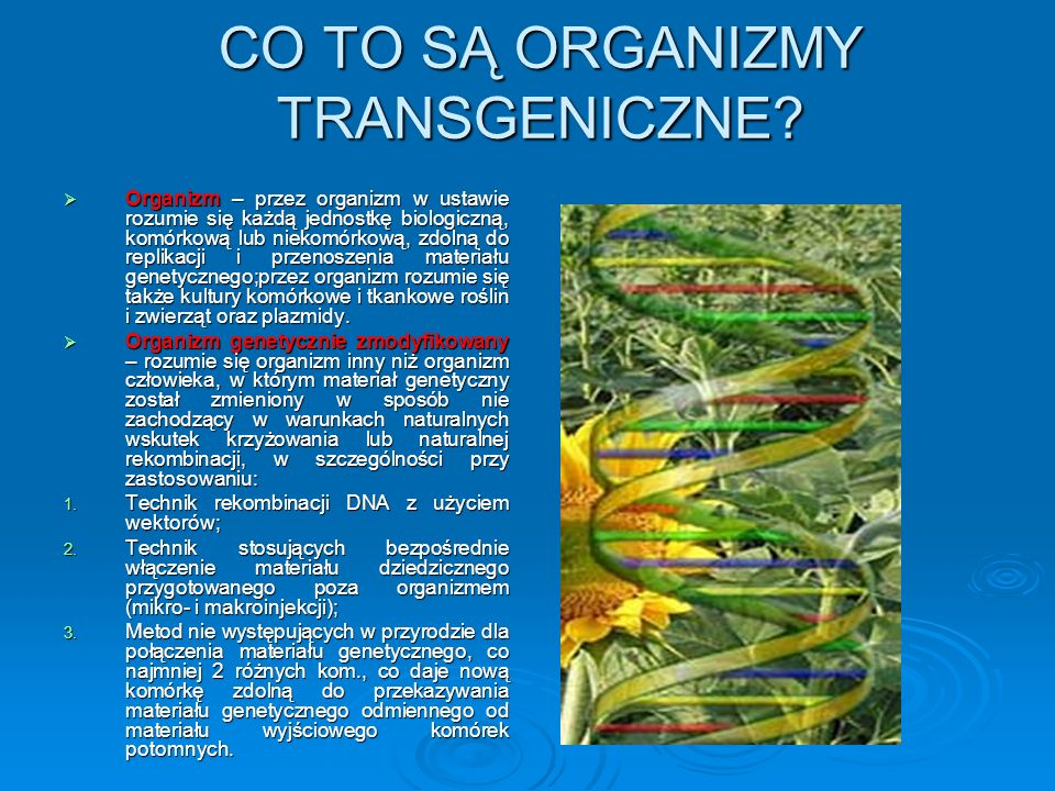 CO TO SĄ ORGANIZMY TRANSGENICZNE