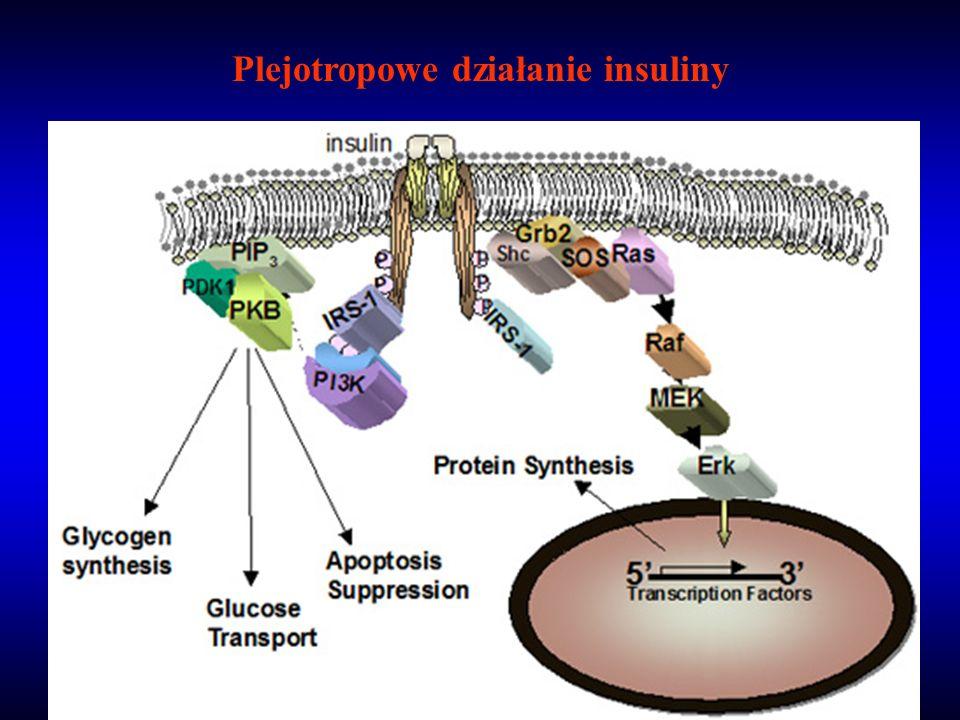 Plejotropowe działanie insuliny