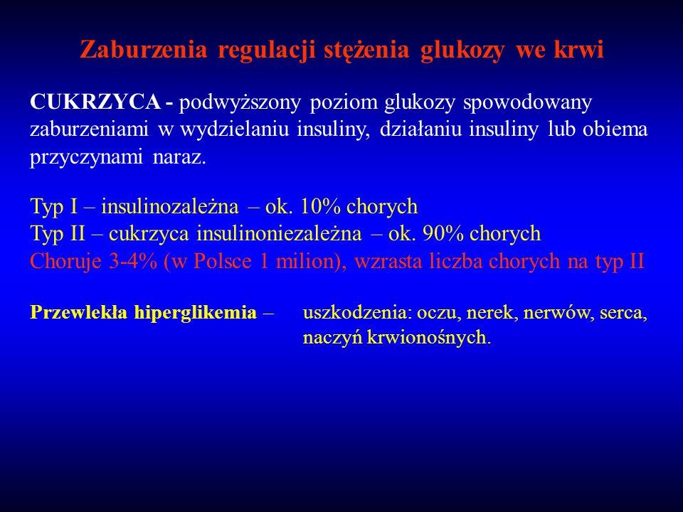 Zaburzenia regulacji stężenia glukozy we krwi