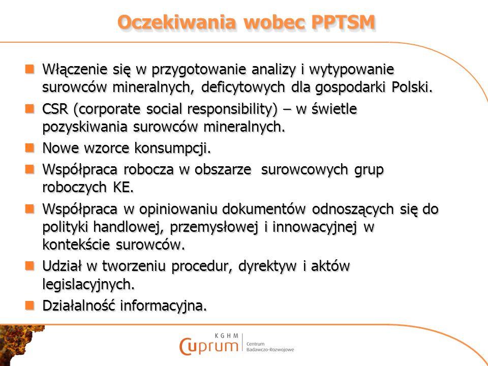 Oczekiwania wobec PPTSM