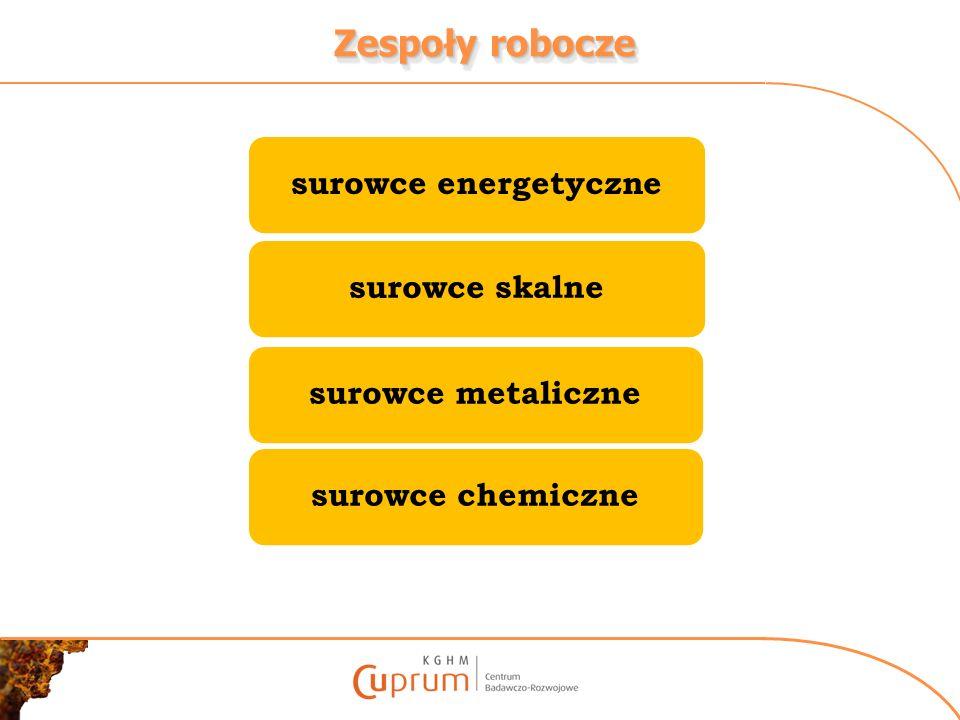 Zespoły robocze surowce energetyczne surowce skalne surowce metaliczne