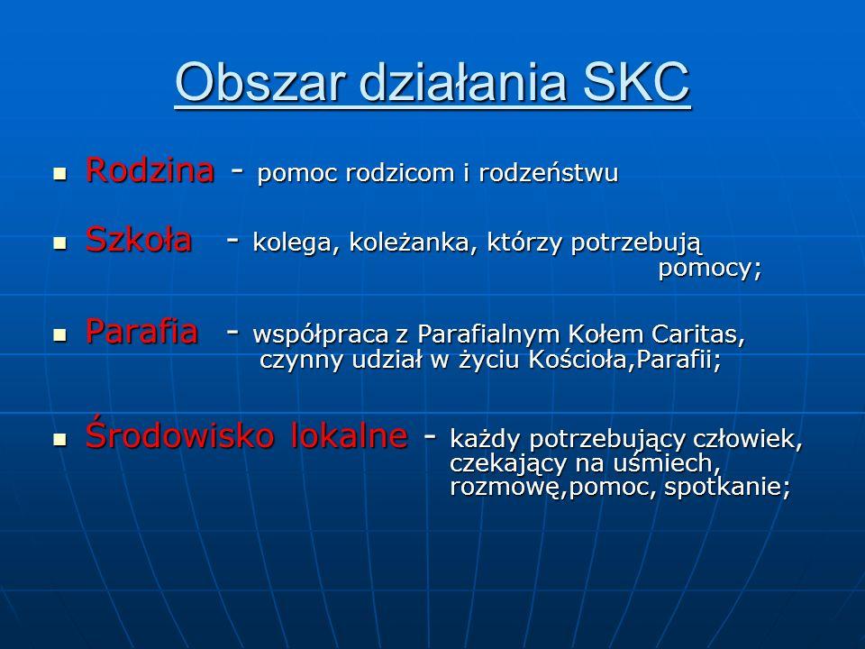 Obszar działania SKC Rodzina - pomoc rodzicom i rodzeństwu