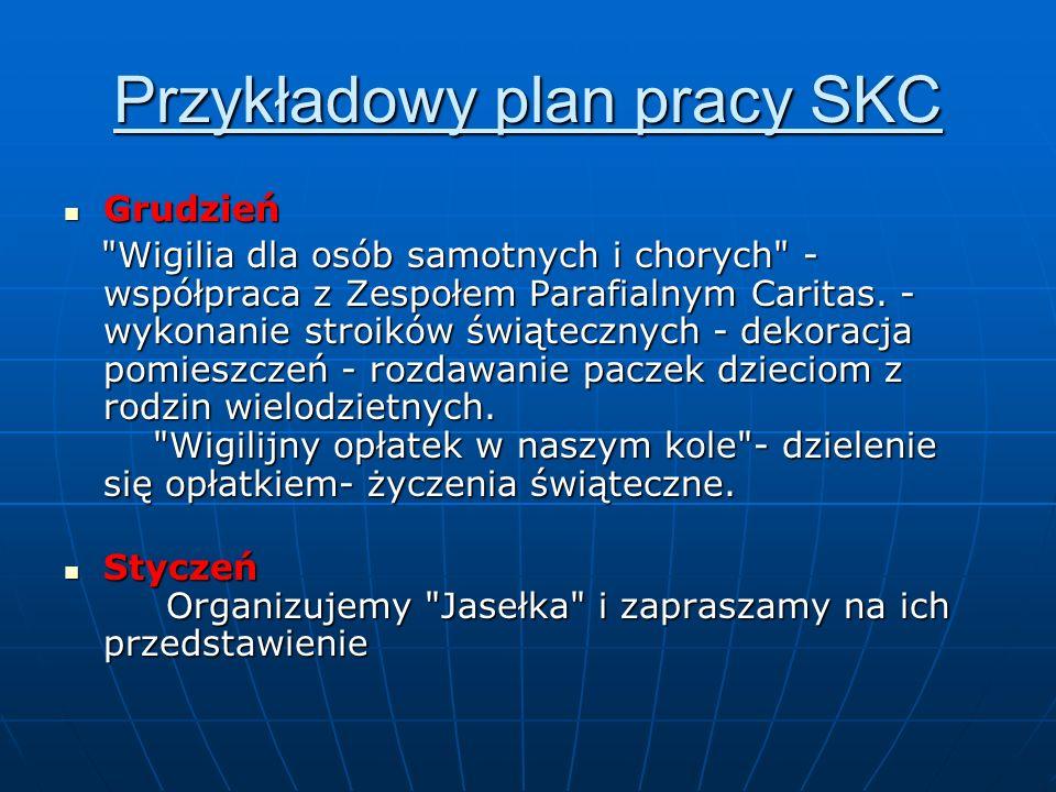 Przykładowy plan pracy SKC