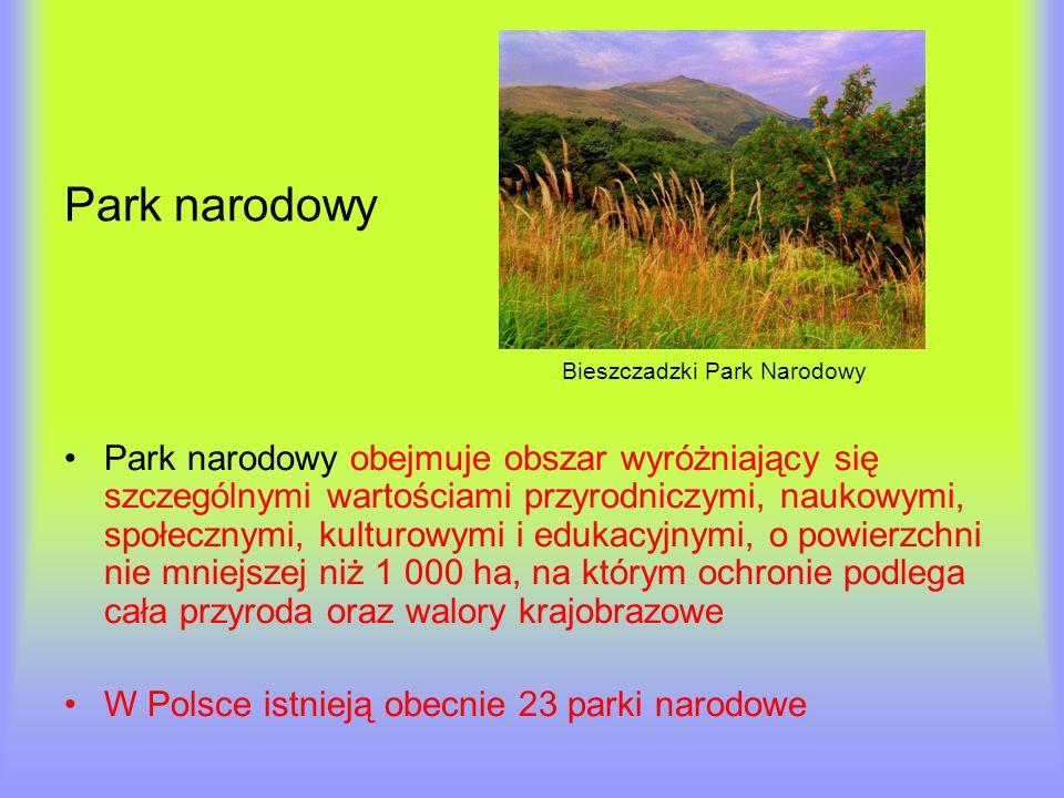 Park narodowy Bieszczadzki Park Narodowy.