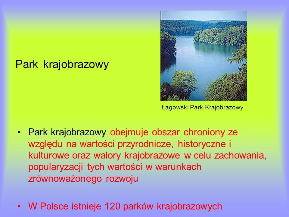 Park krajobrazowy Łagowski Park Krajobrazowy