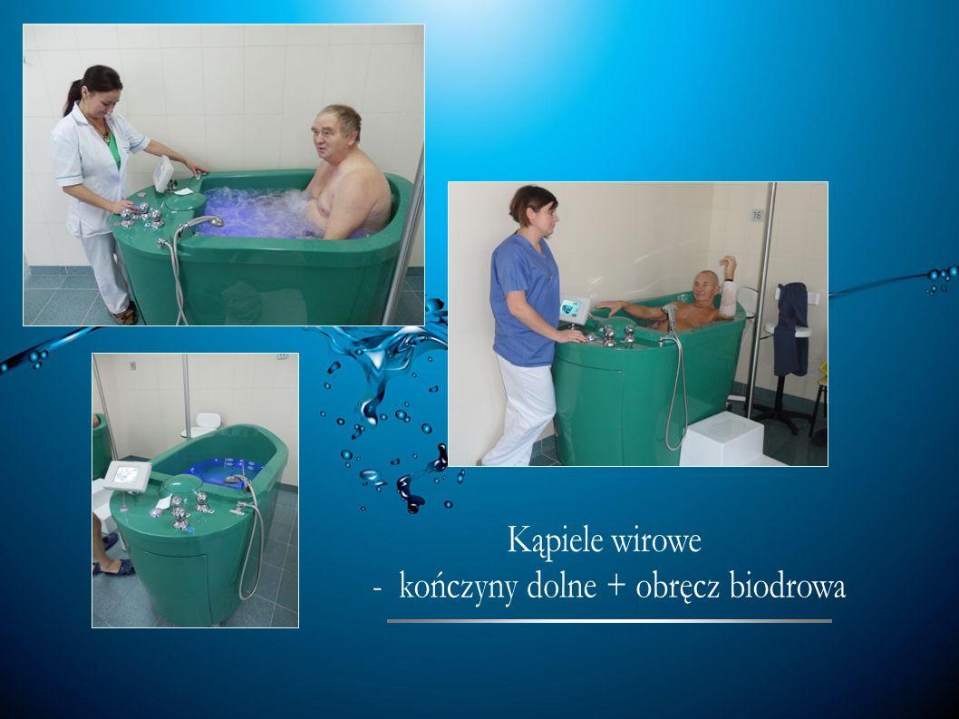 - kończyny dolne + obręcz biodrowa