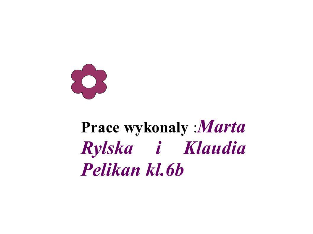 Prace wykonaly :Marta Rylska i Klaudia Pelikan kl.6b