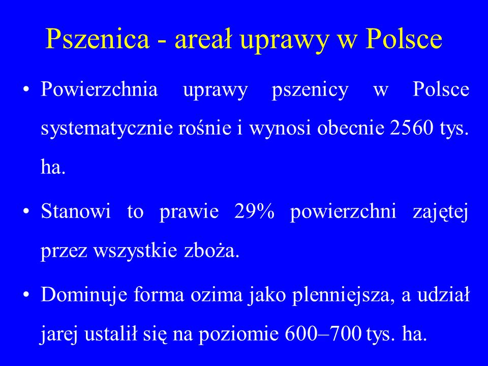 Pszenica - areał uprawy w Polsce
