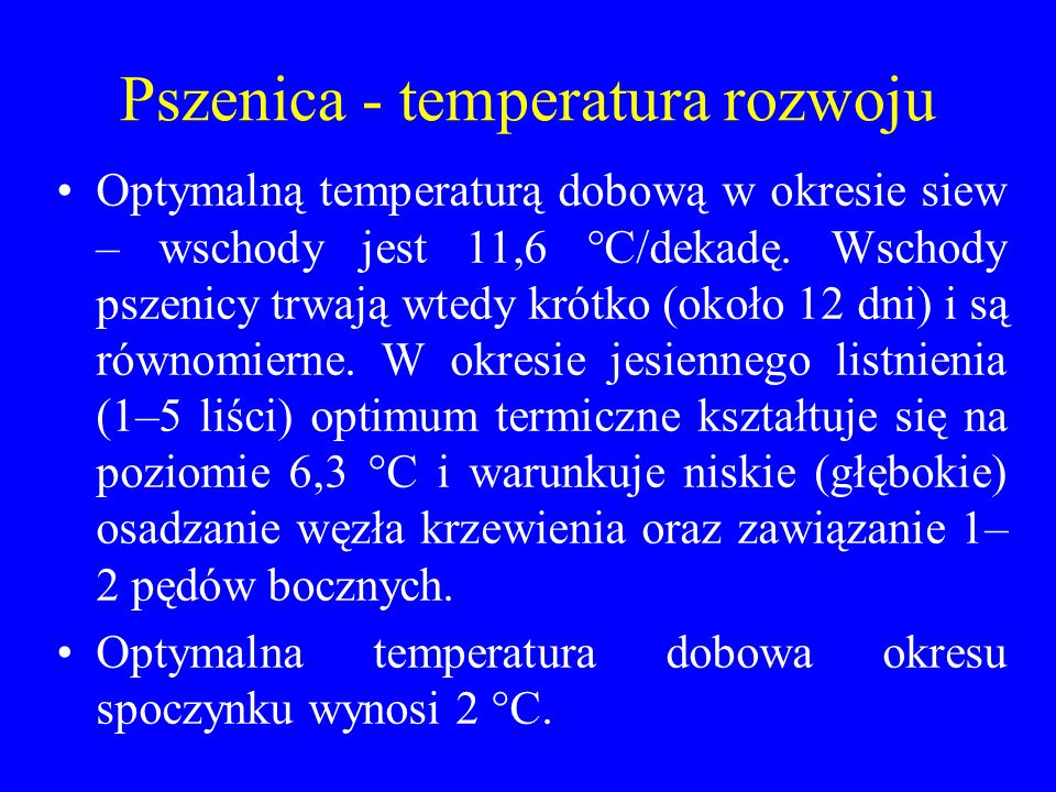 Pszenica - temperatura rozwoju