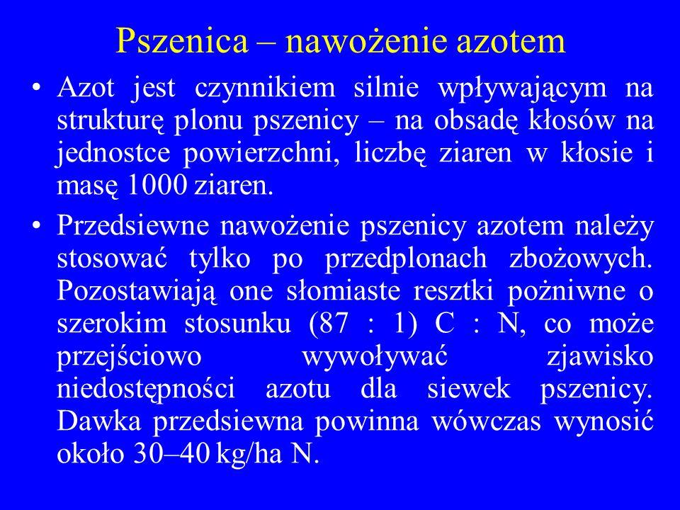 Pszenica – nawożenie azotem
