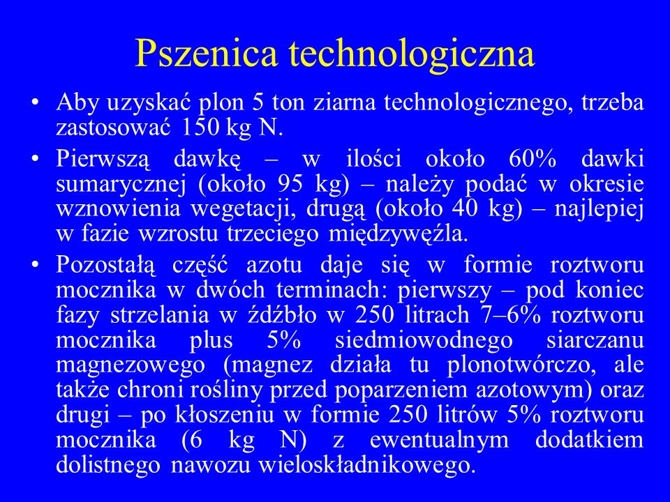 Pszenica technologiczna