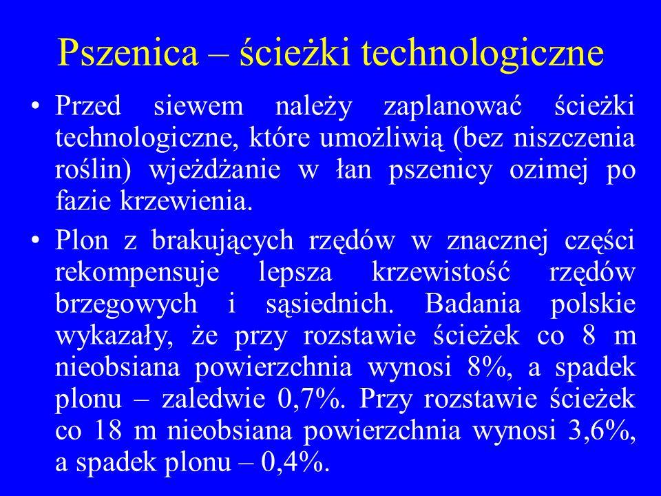Pszenica – ścieżki technologiczne