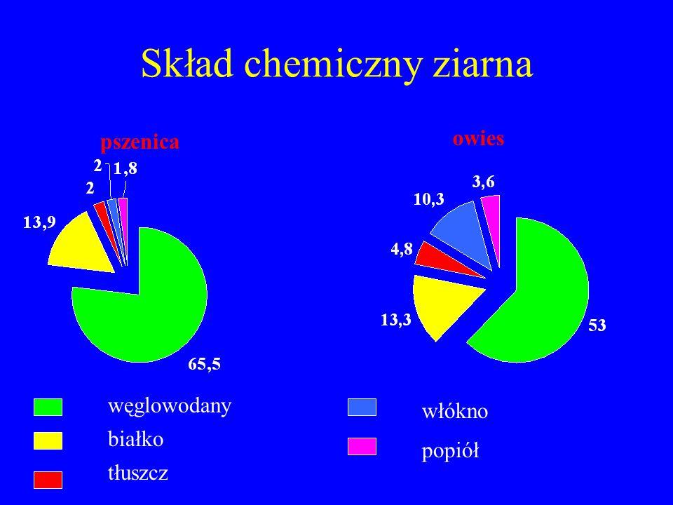 Skład chemiczny ziarna