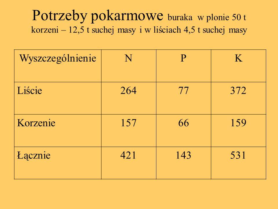 Potrzeby pokarmowe buraka w plonie 50 t korzeni – 12,5 t suchej masy i w liściach 4,5 t suchej masy