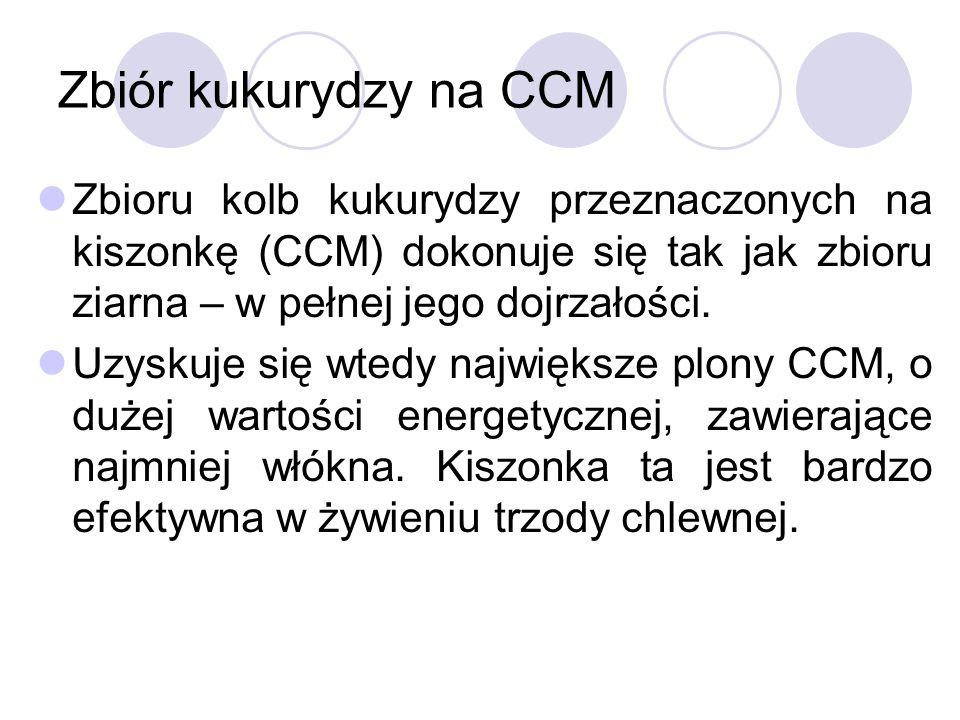 Zbiór kukurydzy na CCM Zbioru kolb kukurydzy przeznaczonych na kiszonkę (CCM) dokonuje się tak jak zbioru ziarna – w pełnej jego dojrzałości.