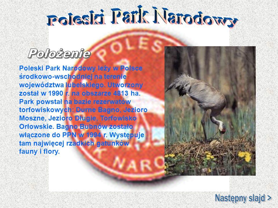 Poleski Park Narodowy Położenie Następny slajd >