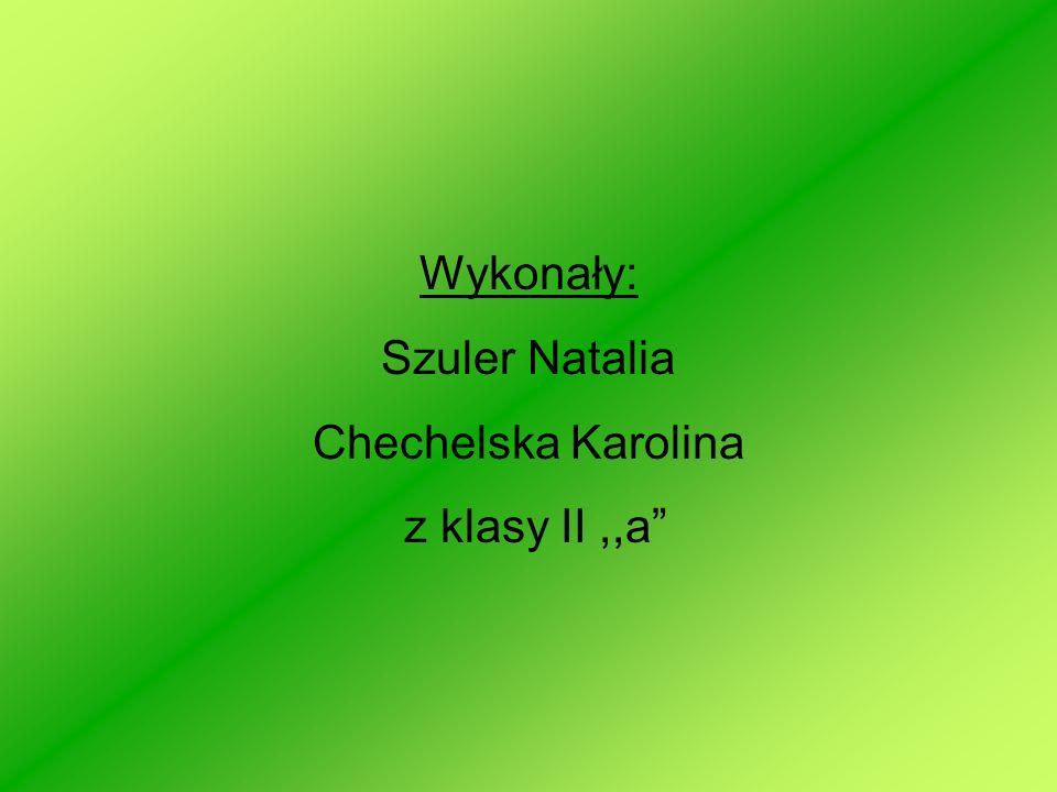 Wykonały: Szuler Natalia Chechelska Karolina z klasy II ,,a