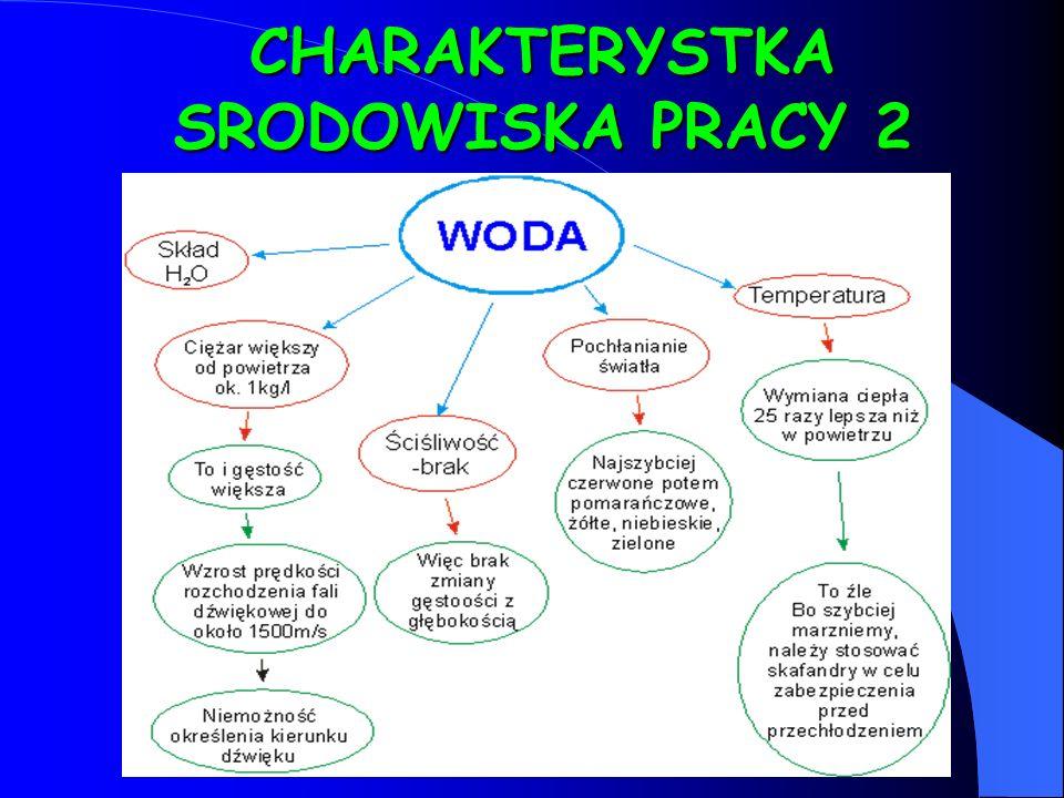 CHARAKTERYSTKA SRODOWISKA PRACY 2