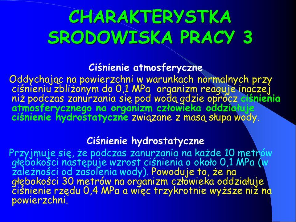 CHARAKTERYSTKA SRODOWISKA PRACY 3
