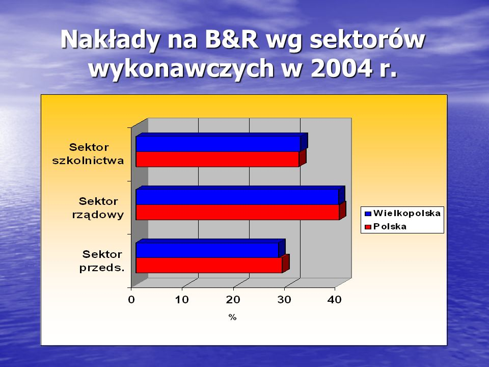 Nakłady na B&R wg sektorów wykonawczych w 2004 r.