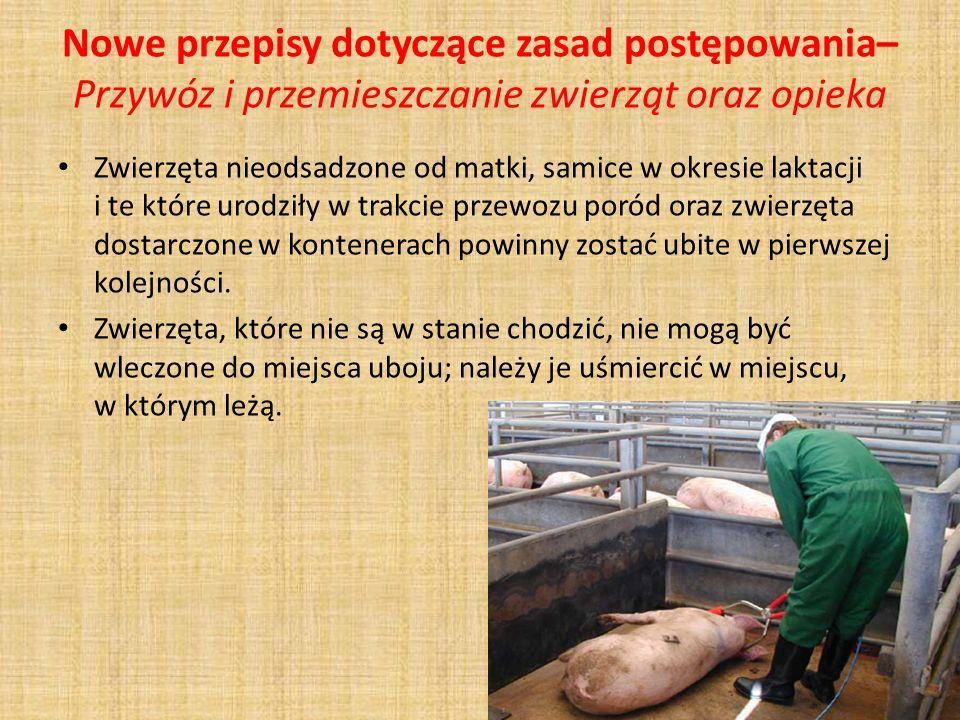 Nowe przepisy dotyczące zasad postępowania– Przywóz i przemieszczanie zwierząt oraz opieka