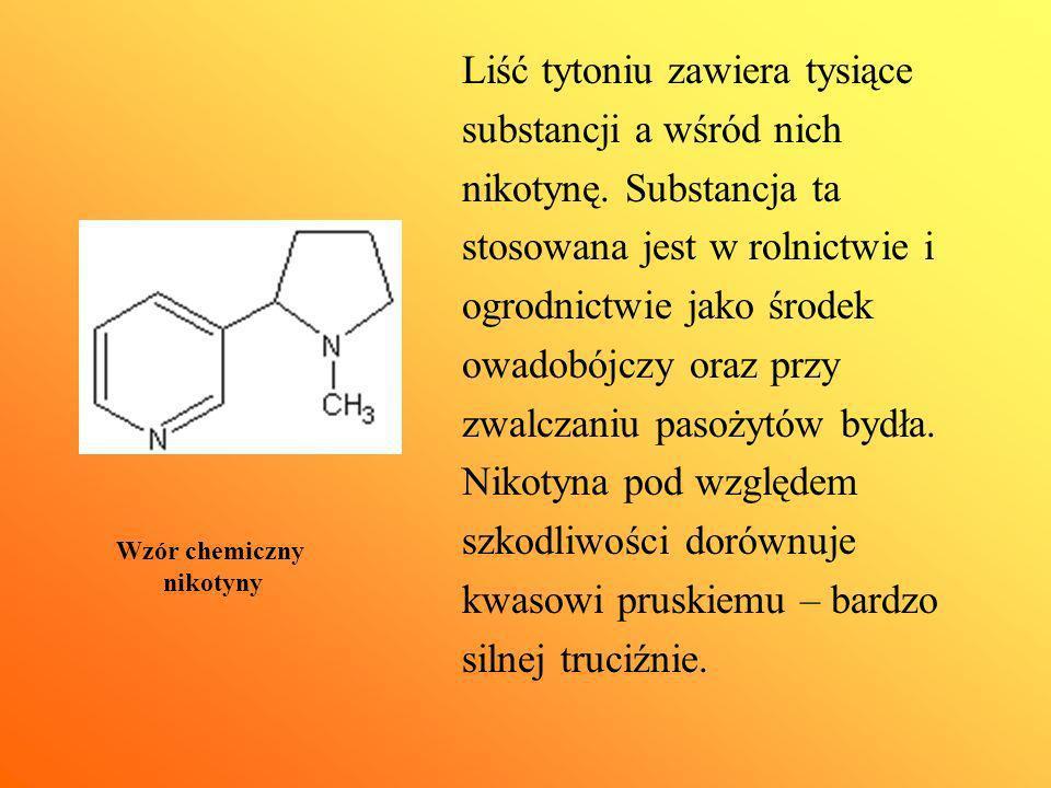 Liść tytoniu zawiera tysiące substancji a wśród nich