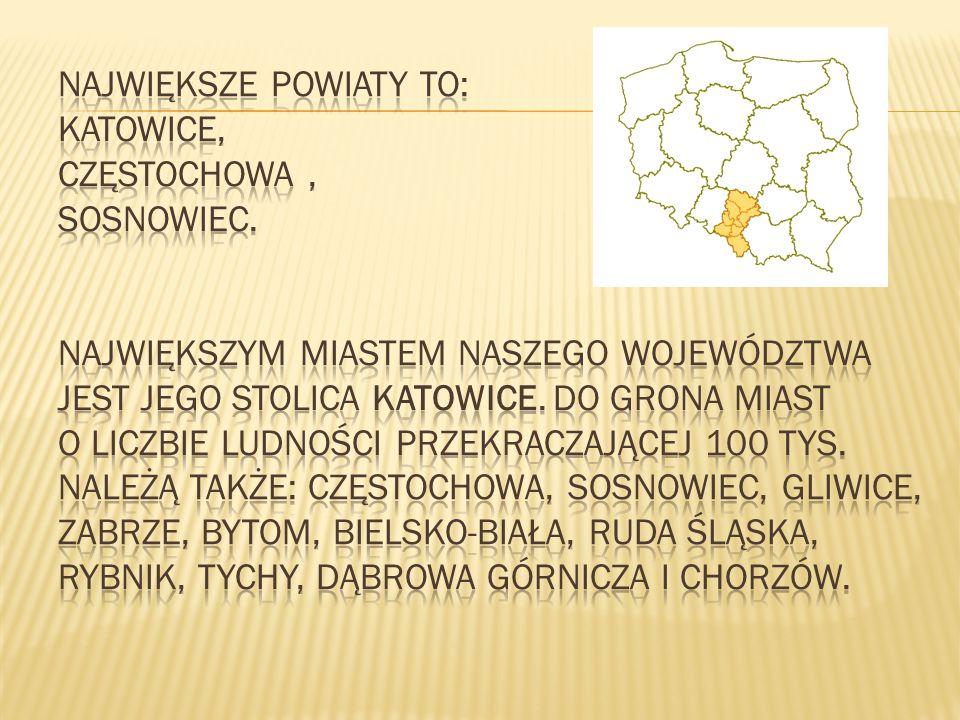 Największe powiaty to: Katowice, Częstochowa , Sosnowiec