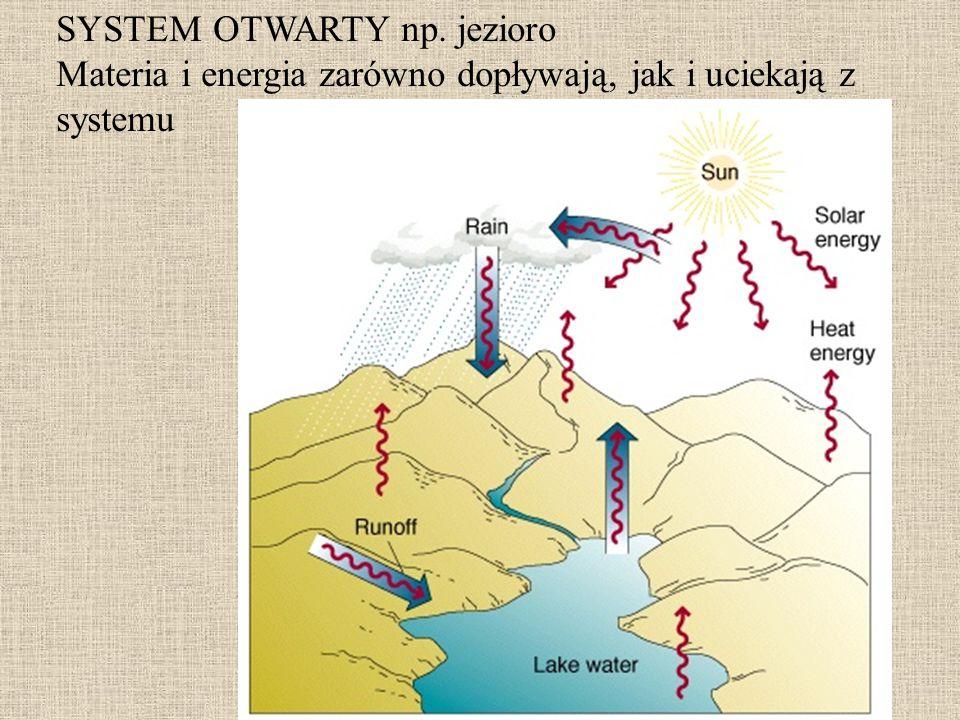 SYSTEM OTWARTY np. jezioro