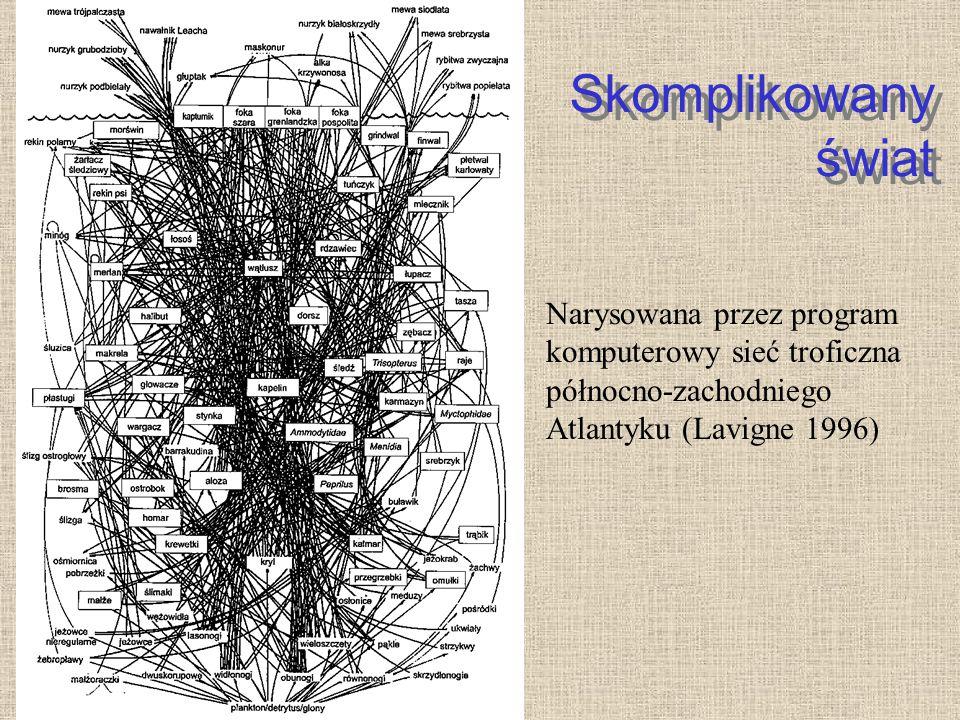 Skomplikowany świat Narysowana przez program komputerowy sieć troficzna północno-zachodniego Atlantyku (Lavigne 1996)