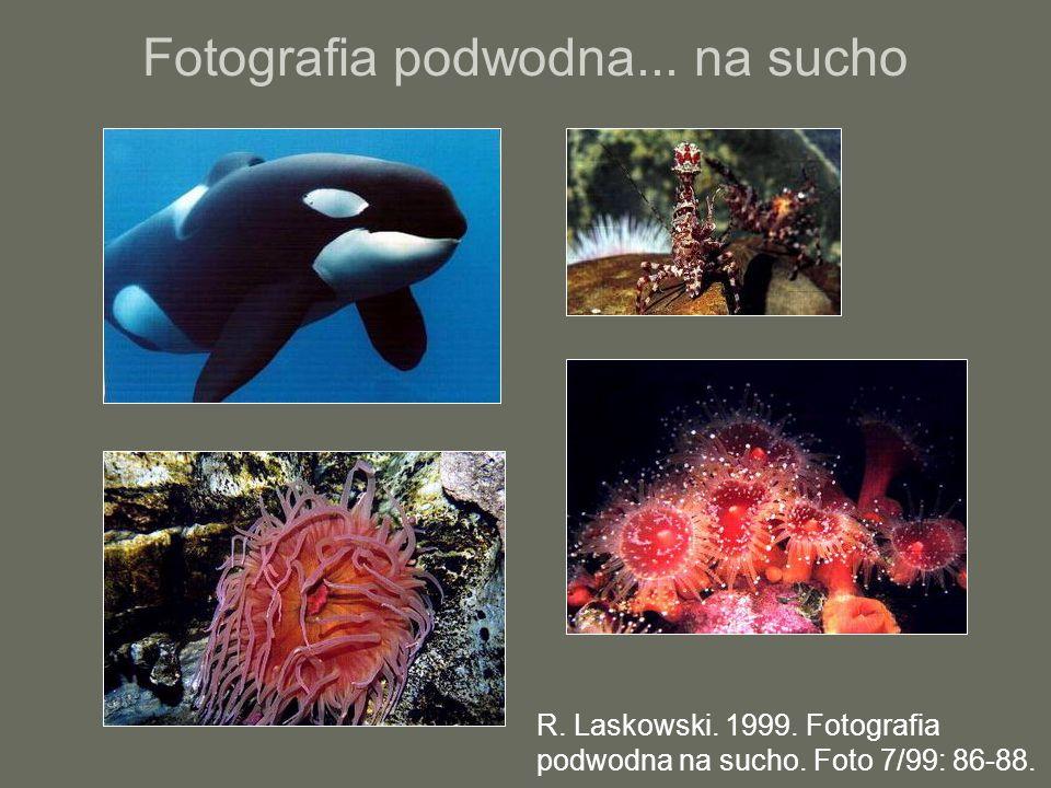 Fotografia podwodna... na sucho