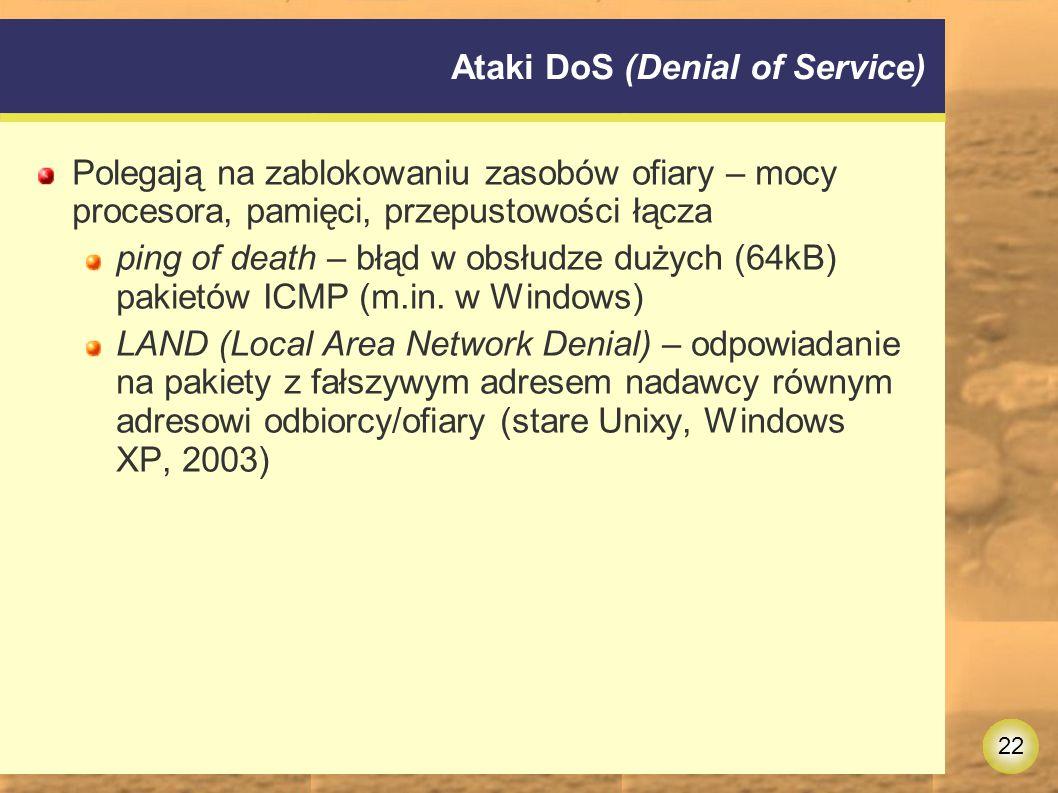 Ataki DoS (Denial of Service)