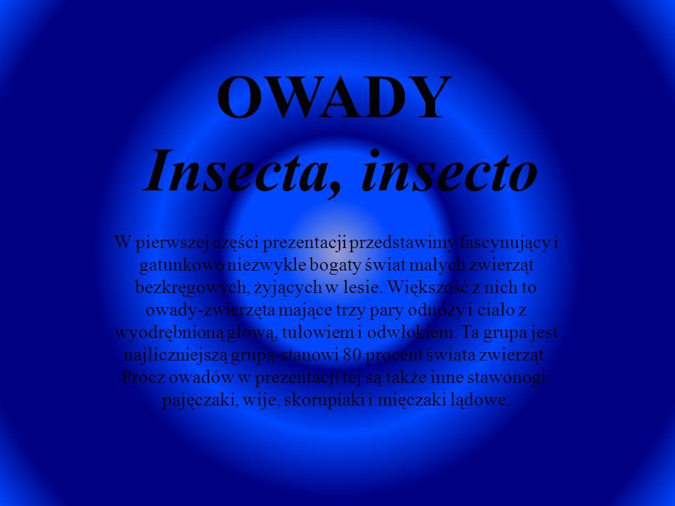 OWADY Insecta, insecto