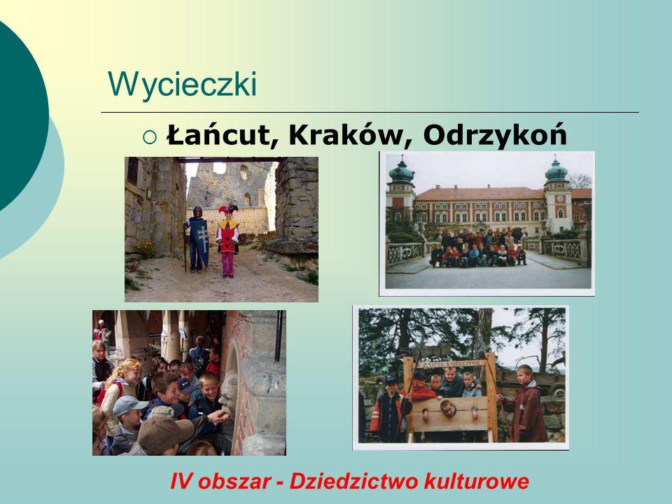 IV obszar - Dziedzictwo kulturowe