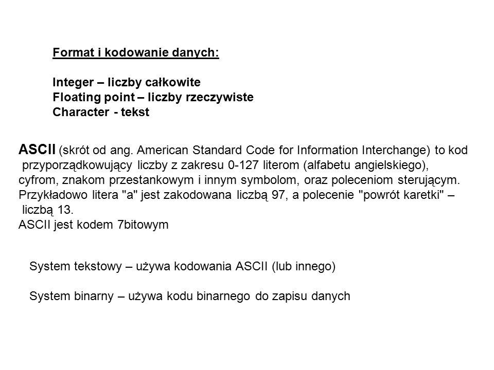 Format i kodowanie danych: