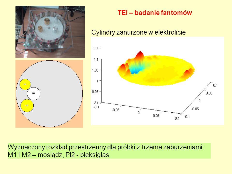 TEI – badanie fantomów Cylindry zanurzone w elektrolicie.