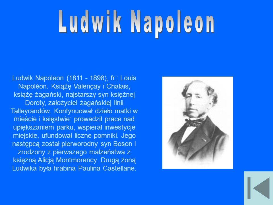 Ludwik Napoleon
