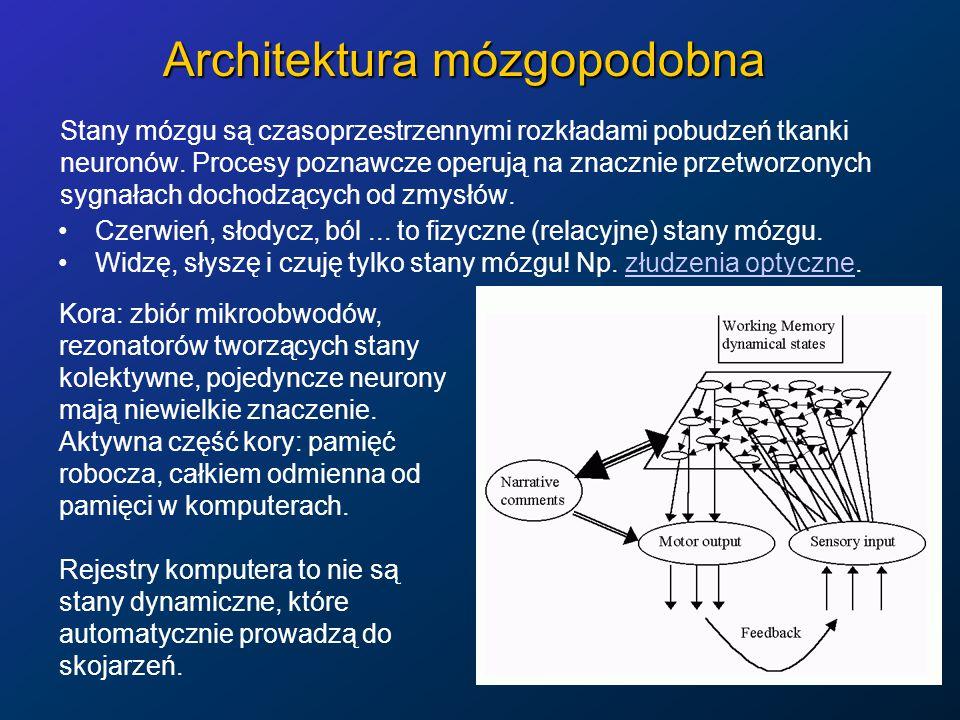 Architektura mózgopodobna