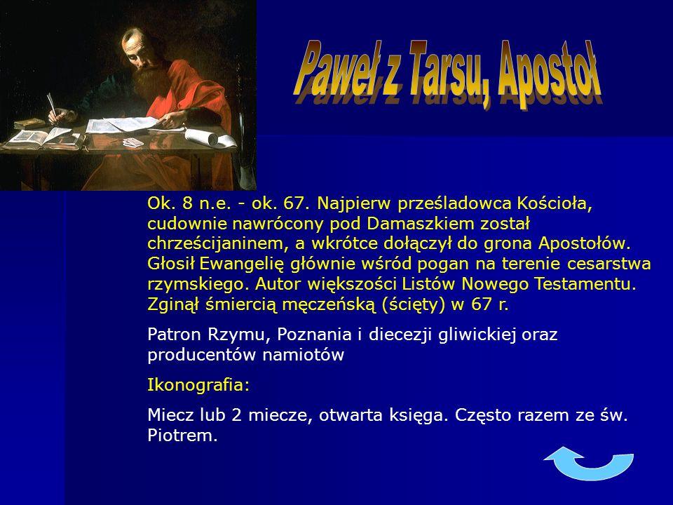 Paweł z Tarsu, Apostoł