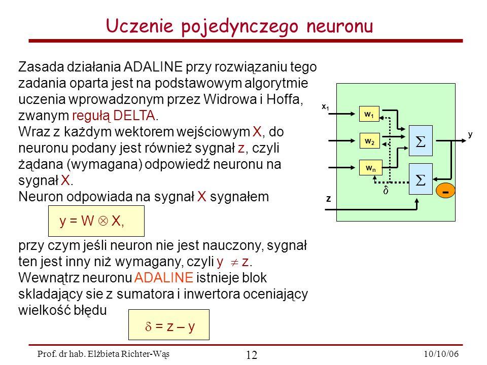 Uczenie pojedynczego neuronu
