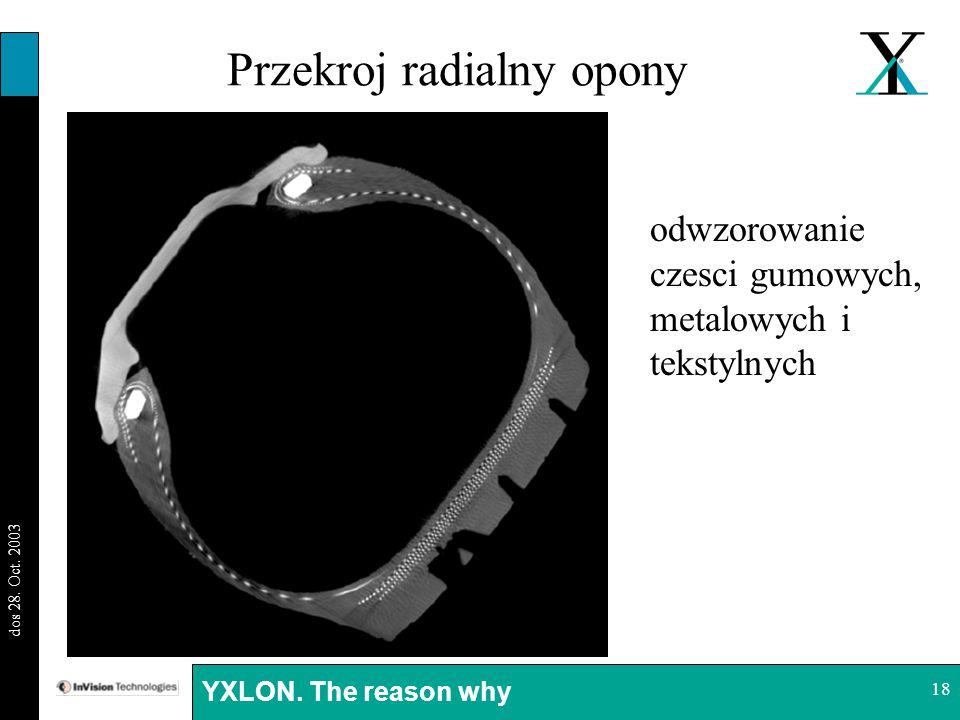 Przekroj radialny opony