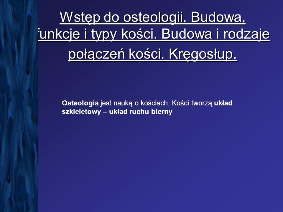 Wstęp do osteologii. Budowa, funkcje i typy kości