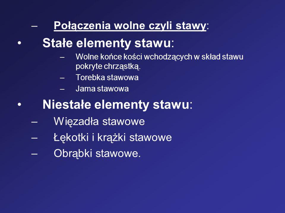 Niestałe elementy stawu: