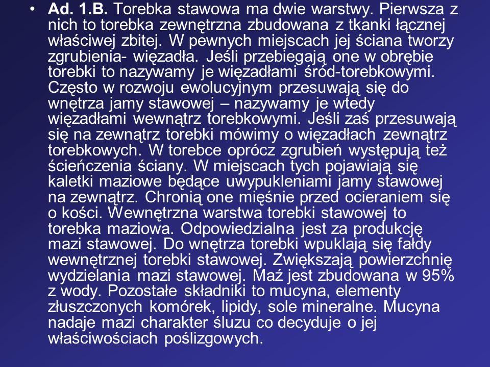 Ad. 1. B. Torebka stawowa ma dwie warstwy
