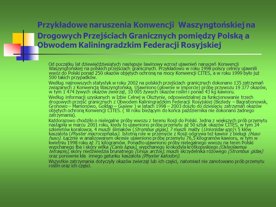 Przykładowe naruszenia Konwencji Waszyngtońskiej na Drogowych Przejściach Granicznych pomiędzy Polską a Obwodem Kaliningradzkim Federacji Rosyjskiej