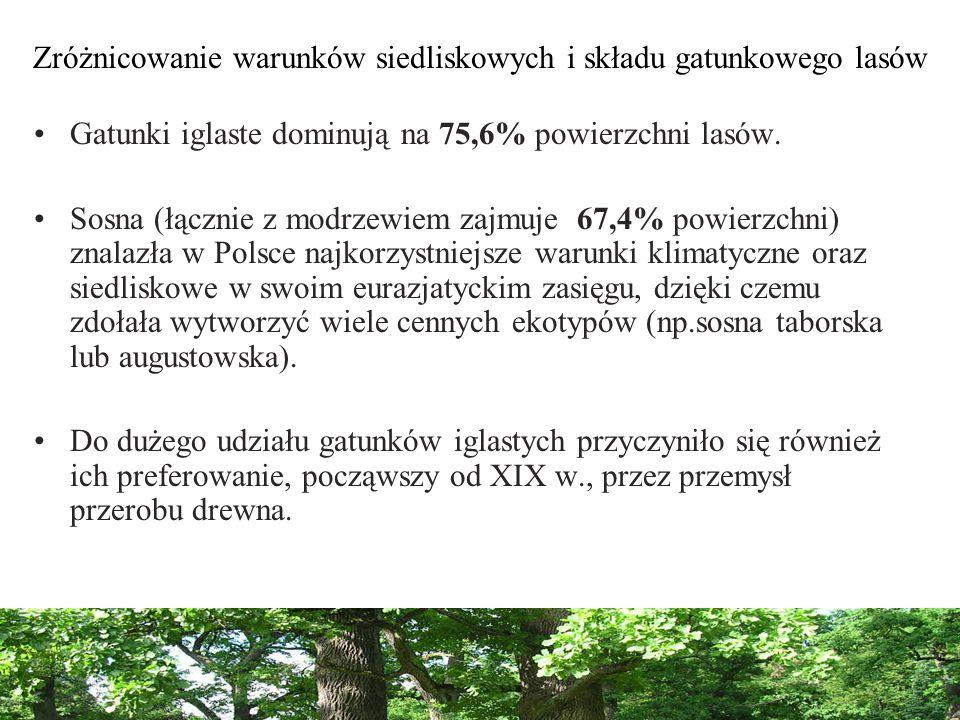 Zróżnicowanie warunków siedliskowych i składu gatunkowego lasów