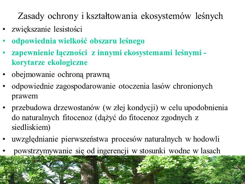 Zasady ochrony i kształtowania ekosystemów leśnych