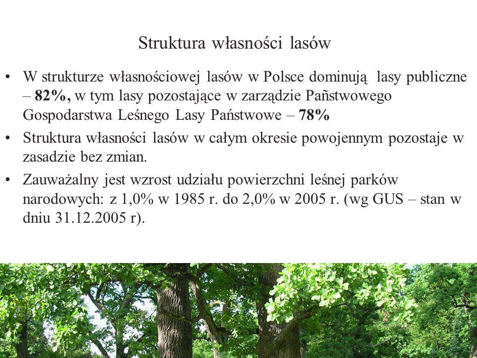 Struktura własności lasów