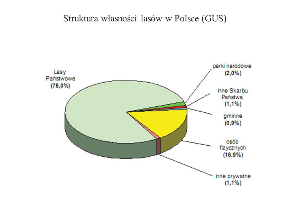 Struktura własności lasów w Polsce (GUS)