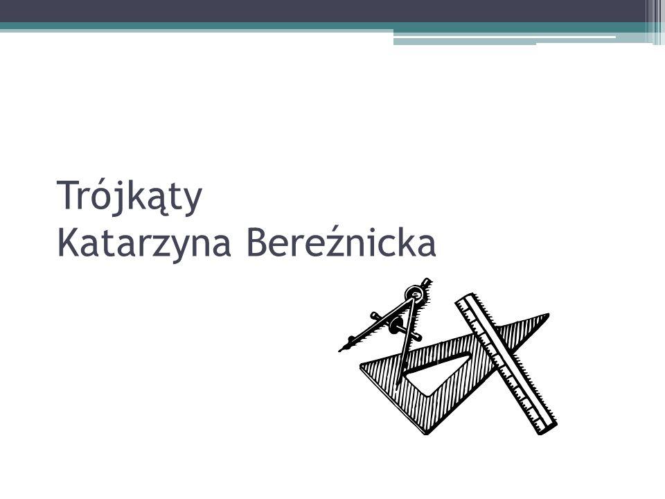 Trójkąty Katarzyna Bereźnicka
