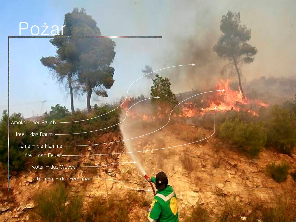 Pożar smoke - der Rauch tree – das Baum flame – die Flamme